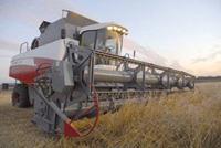 зерноуборочный комбайн RSM181