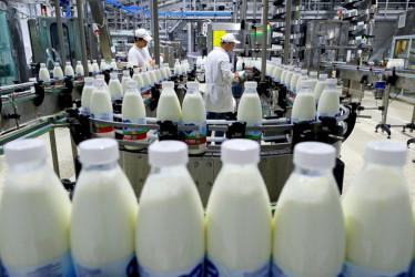 Молокозавод, как пример затратного, но очень прибыльного дела