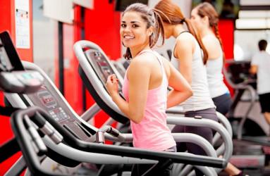 Открытие современного фитнес-клуба: особенности идеи и экономические расчеты