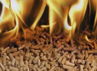Бизнес-идея: производим прессованные дрова