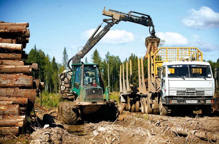 """О том, что нужно использовать опыт Финляндии в развитии лесного комплекса Карелии, заявил глава  """"Рослесхоза """"..."""
