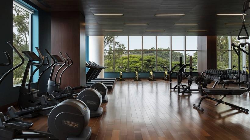 Готовый бизнес план тренажерного зала с расчетами: как открыть спортзал с нуля, сколько это стоит и что нужно для открытия